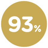 Icono 93%